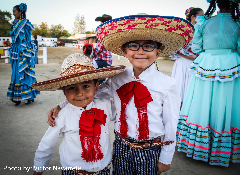 Fiesta Spanish Horse 2018