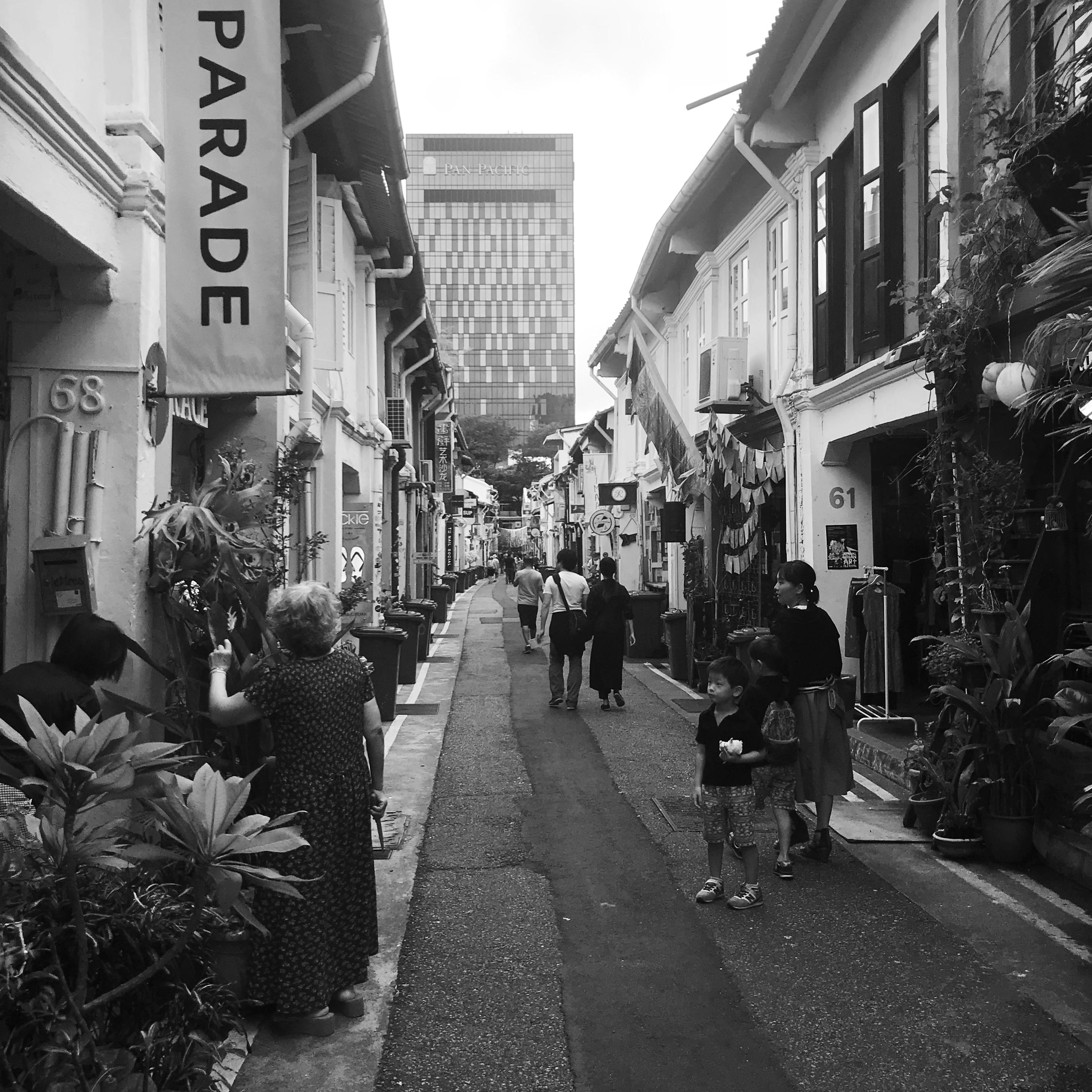 2. 2 JAN 18-Memory Palace_Remains of the day_Singaore Night.JPG
