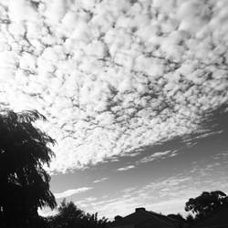 16. 16 JAN 17-Summer sky_insta.JPG