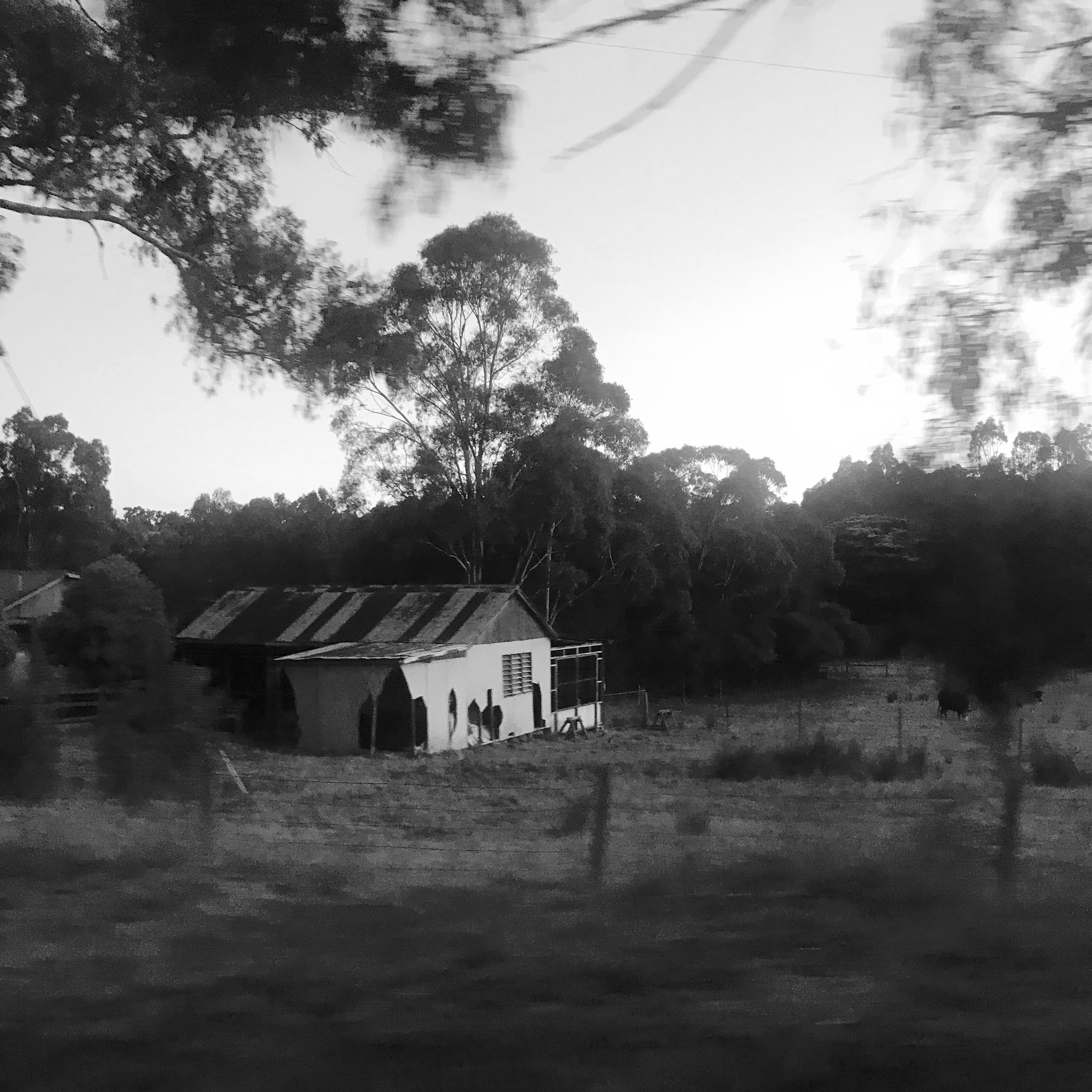 87. 28 MAR 2018-Country, Melbourne.JPG