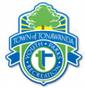 town ton logo.png