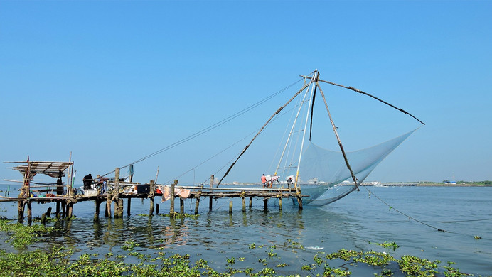 Copy of Chinese Fishing Net