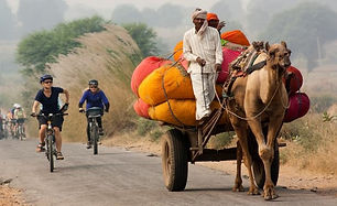 Rajastan Lifestyle.jpg