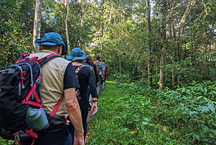 Trekking in Periyar Tiger Sanctuary