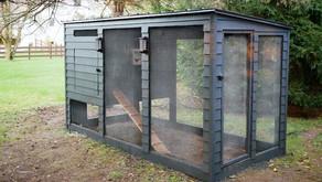 Chicken Coop Plans: How to Build a Modern Chicken Coop