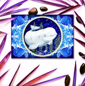 beluga pst card shutterstock 2.jpg