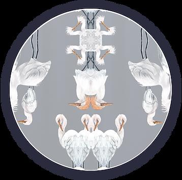 egret circle3.png