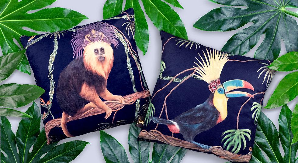 cushion background 2.jpg