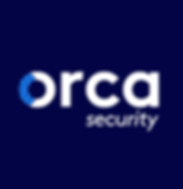 orca security