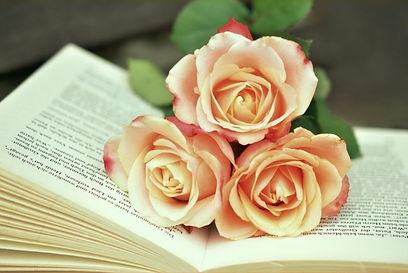 Rosie Amber_Sandy Cowen_Book Review.jpg