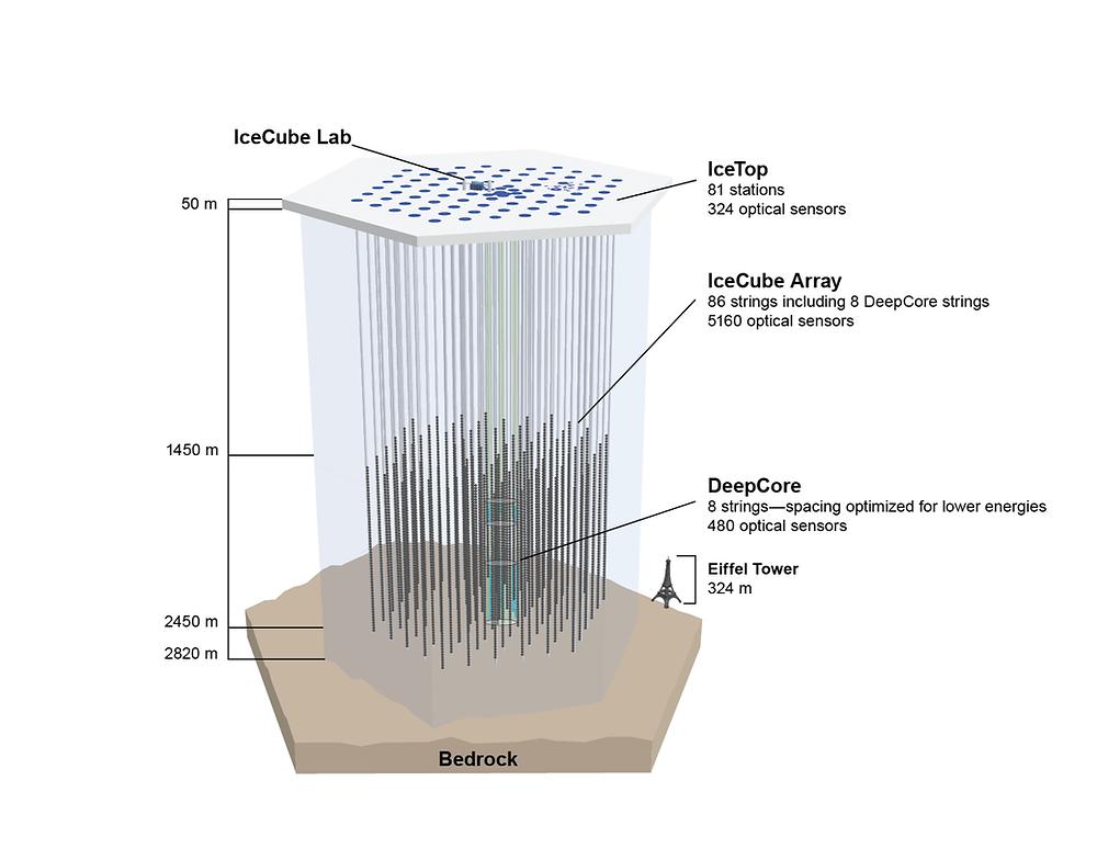 Diagram of the IceCube Neutrino Observatory