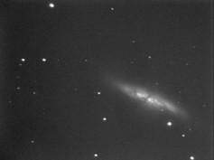 M82 Galaxy