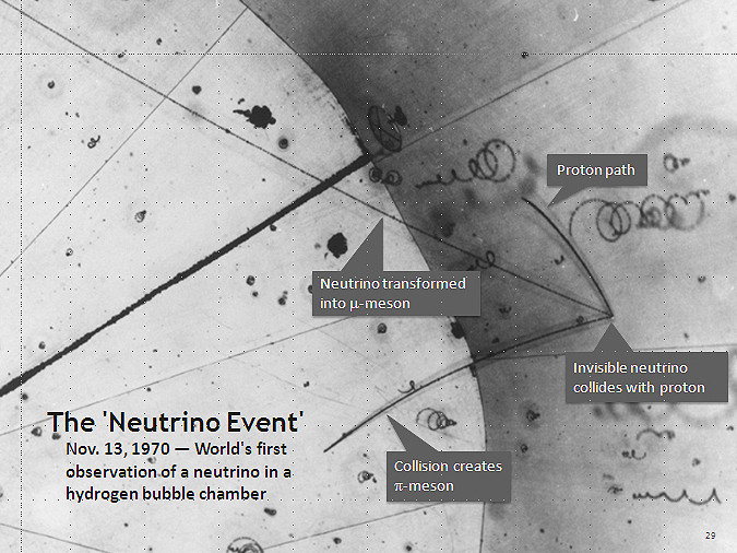 First Observation of a Neutrino in a hydrogen bubble chamber