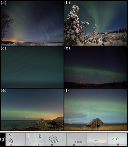 Images of dune aurorae taken by citizen scientists on 20th January 2016: (a) Aurora, Finland, 17:23UT, (b) Engerdal, Norway, 20:13 UT, (c) Karmøy, Norway, around 20:30 UT, (d) the Isle of Mull, Scotland, at 20:57 UT, (e) Lendalfoot, Scotland, 21:15 UT, (f) Rattray, Scotland, at 21:15 UT (g) shows the directions the aurorae were going (a to f, left to right).