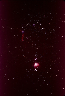 Southern Orion