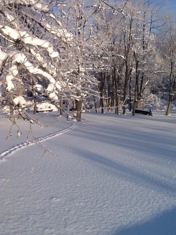 winter2_edited.JPG