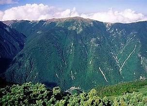 笹山1.jpg