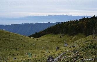笹山2.jpg