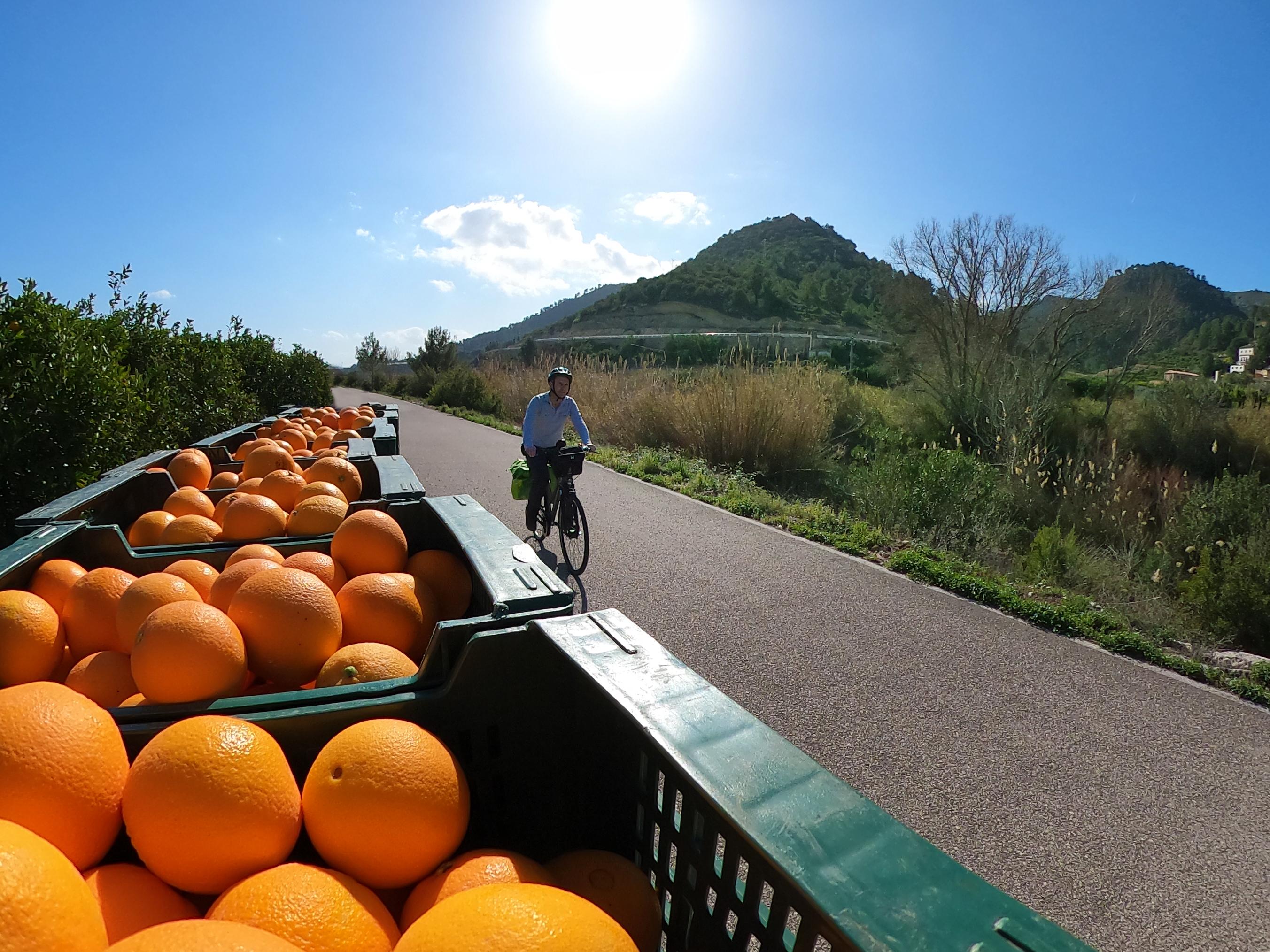 Xuquer_sumacarcer sinaasappels kisten fi
