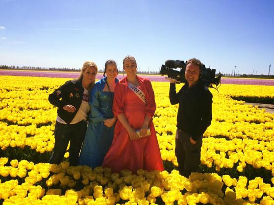 TV Report Tulip fields, Noordoostpolder. the Netherlands