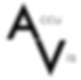 AccuVis Web Design