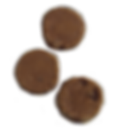 cookie_chocochip.png