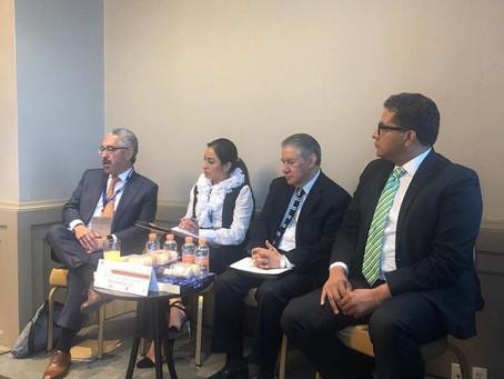 Panel III - Workshops / Nueva LPI en México AMPPI