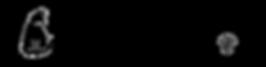 Bushnell Media Text Logo.png
