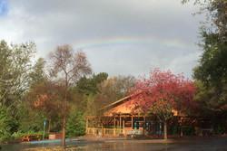 8_rainbow