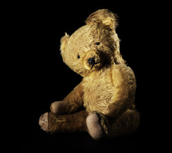 fine-art-photography-sad-bear