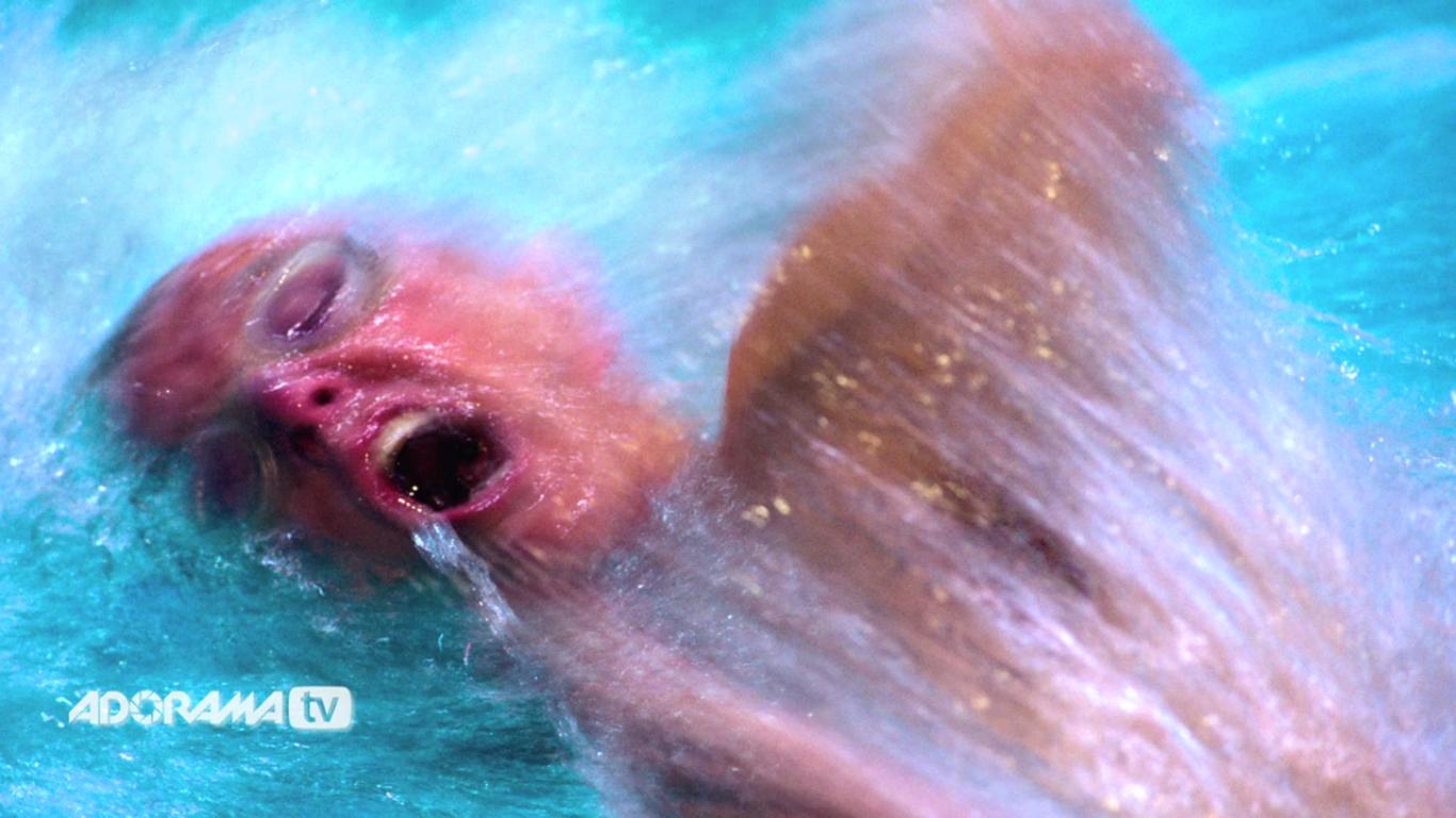Motion Blur 10