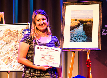 2nd Place @ Congressional Art Contest