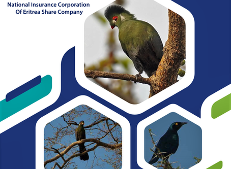 Facts about NICE (National Insurance Corporation of Eritrea) Share Co.