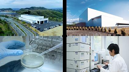 Fine Japan R&D Center