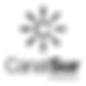 canal-sur-logo-png-transparent_edited.pn