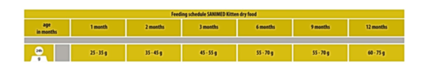 Kitten Feeding Schedule.png