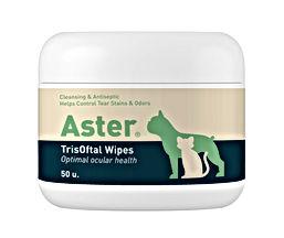 Aster .jpg