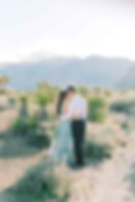 Fine Art Film Las Vegas Red Rock Canyon
