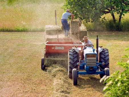 Esonero versamento contributi datori di lavoro agricoltura