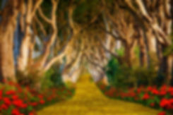 The yellow brick road leading into a sca