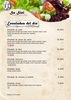 Carta_Sa_Sini_castellà-3