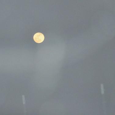 Gray Sky Gold Moon.jpg