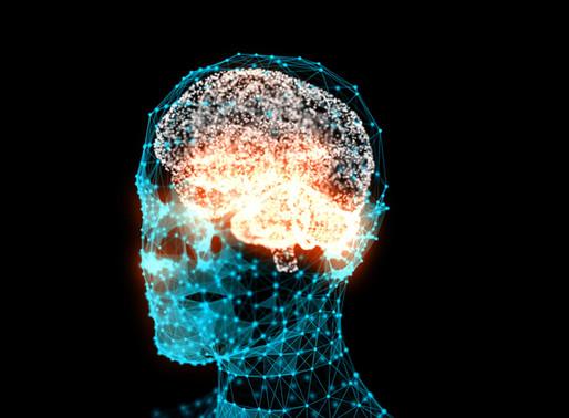 Leadership: Neuroscience & Real Situational Awareness.