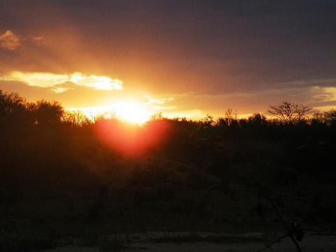 sunset resized.jpg