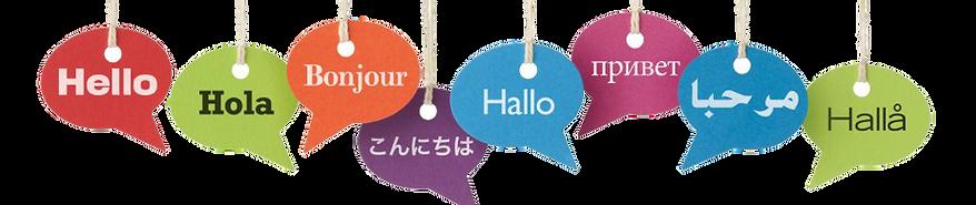 Language Tuition_logo.png