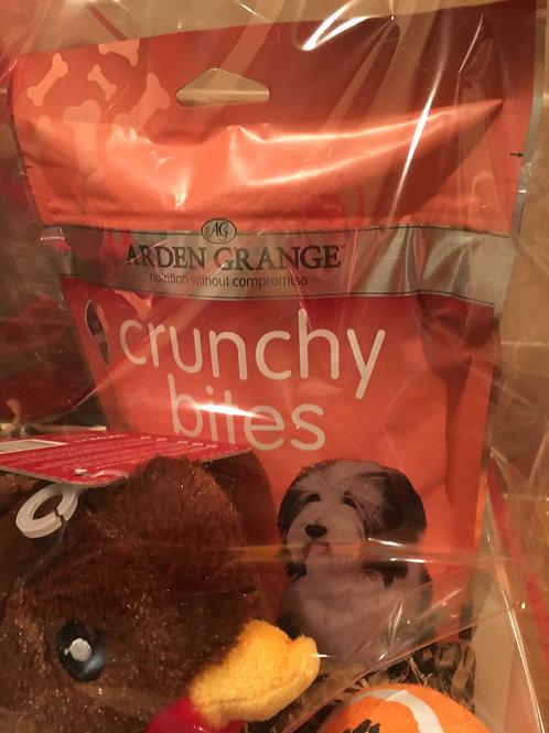 Winter Doggie Gift Set