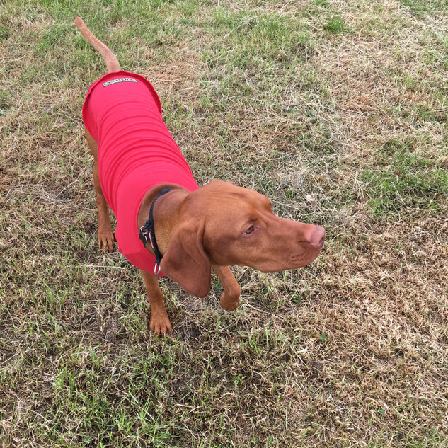 Keeping cool in my red Hotterdog tshirt