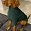 Thumbnail: Hotterdog Dog Jumper (M)