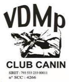 2020-banderolle-club-vdmp_edited.jpg