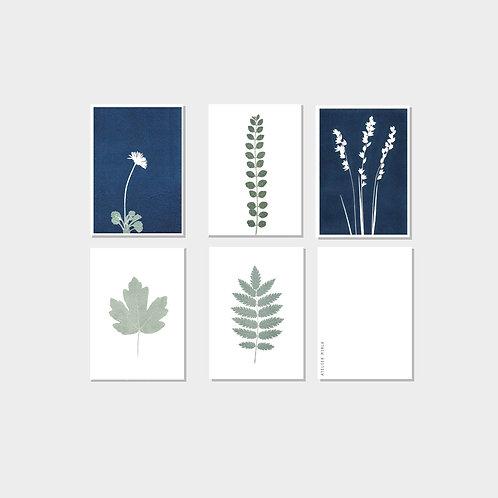 Kartenset Frühling